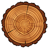 Cross section of tree stump | Stock Vector Graphics