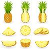 Icon Set Pineapple | Stock Vektrografik