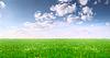 Szerokie pole i błękitne niebo | Stock Foto