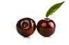 Beautiful plum | Stock Foto