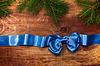 활과 전나무 분기와 블루 새틴 리본 | Stock Foto