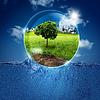 Grüne Welt in Blase. abstrakter natürlichen | Stock Foto