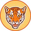 tiger vorderen Kopf