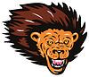 Lion Big Cat Head