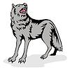 Wolf Wilder Hund heult