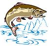 Форель рыба прыгает | Векторный клипарт