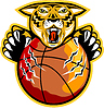 Tiger Claws Basketball-Ball
