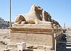ID 4001439 | Alte Hieroglyphen in Karnak-Tempel von Luxor | Foto mit hoher Auflösung | CLIPARTO