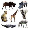 Zestaw zwierząt Afryki | Stock Foto