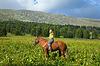 ID 4025398 | Happy female rider | Foto mit hoher Auflösung | CLIPARTO