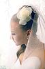 Bride in veil | Stock Foto