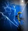ID 4282258 | Viel Blitzeinstellung Schatten gestellt Kiefer in Brand | Illustration mit hoher Auflösung | CLIPARTO