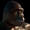 ID 4283465 | Neandertaler Urmenschen | Illustration mit hoher Auflösung | CLIPARTO