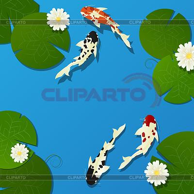 Koi ryb i Lotos | Klipart wektorowy |ID 3881436
