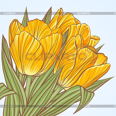 Floral Hintergrund mit Blüten von Tulpen | Stock Vektorgrafik |ID 3810001
