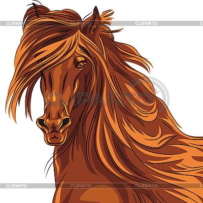 Porträt von roten Pferd | Stock Vektorgrafik |ID 3884065
