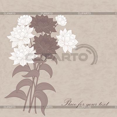 Kwiaty dalii | Klipart wektorowy |ID 4024177
