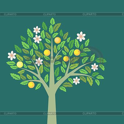 Drzewa owocowe | Klipart wektorowy |ID 3811638
