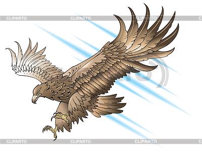 Adler angreifend | Stock Vektorgrafik |ID 3997726