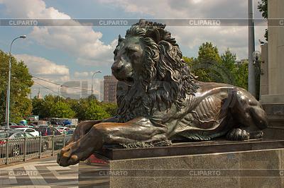 лев атакует фото