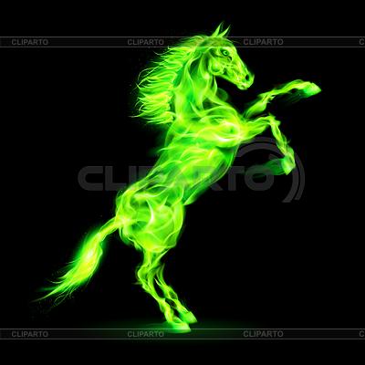 Fire horse rearing up | Klipart wektorowy |ID 4014672