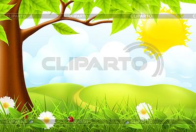 Grüne Landschaft, 10eps | Stock Vektorgrafik |ID 3774678