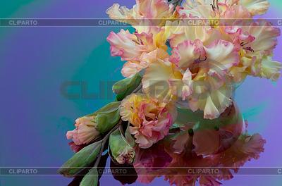 Фоторамки Букет красных тюльпанов