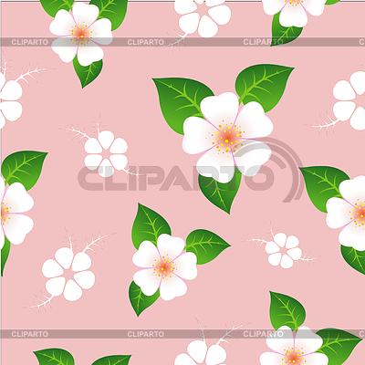 Kwiatowy wzór | Klipart wektorowy |ID 3905564