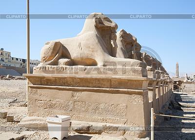 Alte Hieroglyphen in Karnak-Tempel von Luxor | Foto mit hoher Auflösung |ID 4001439