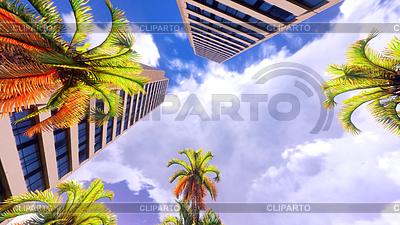 Hawajski raj | Foto stockowe wysokiej rozdzielczości |ID 4280108