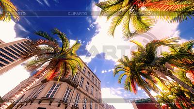 Hawajski raj | Foto stockowe wysokiej rozdzielczości |ID 4280109
