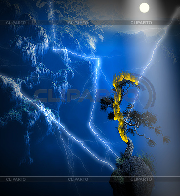 Viel Blitzeinstellung Schatten gestellt Kiefer in Brand | Illustration mit hoher Auflösung |ID 4282258